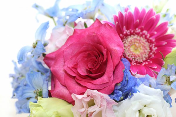 ナイナイの岡村さん、ご結婚おめでとうございます\(^o^)/